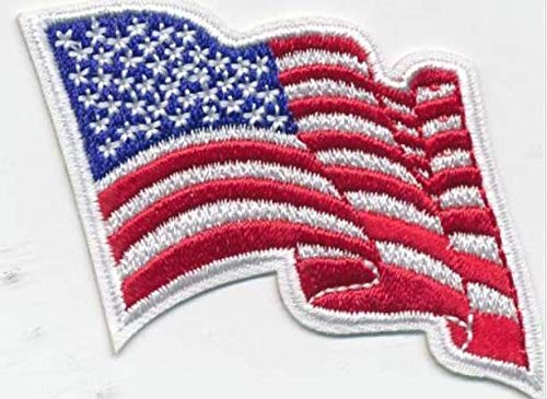 Cub Girl Boy WAVING AMERICAN FLAG Embroidered Iron-On Fun Patch Crests Badge Scout Guides