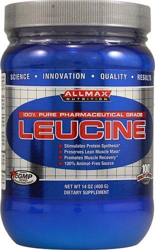 Leucine poudre 400 grammes