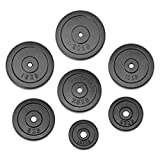 JLL Weight Plates 1' Cast Iron Weights for Dumbbell/Weight Lifting Bars - 0.5kg, 1.25kg, 2.5kg, 5kg,...
