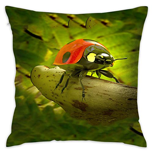 TRK-KWQDF Ladybug Beetle Throw Pillows Covers for Couch/Bed 18 X 18 Inch, Print for Textile Wallpaper Pattern Home Sofa Cushion Cover Pillowcase Gift Bed Car Living Home