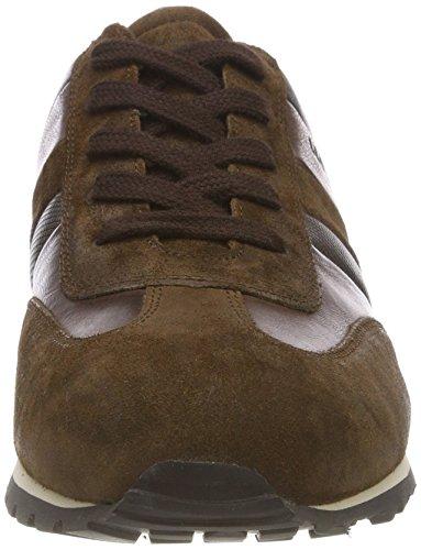 schwarz Homme chocolate Lloyd nut Baskets Marron Agon ebony 2 0wwBRqUx