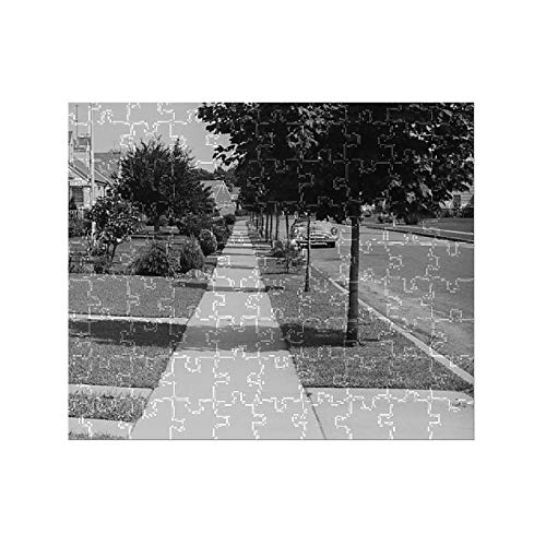 (Media Storehouse 252 Piece Puzzle of Row of Suburban Houses)