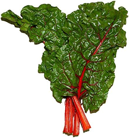 300 RHUBARB RED SWISS CHARD Perpetual Spinach Beta Vulgaris Vegetable Seeds *Flat Shipping