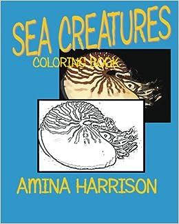 Book Sea Creatures: Coloring Book