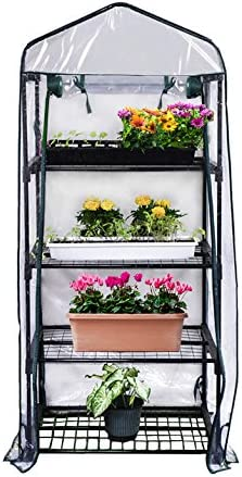 Greenhouse seed starter kit for easy to grow vegetables