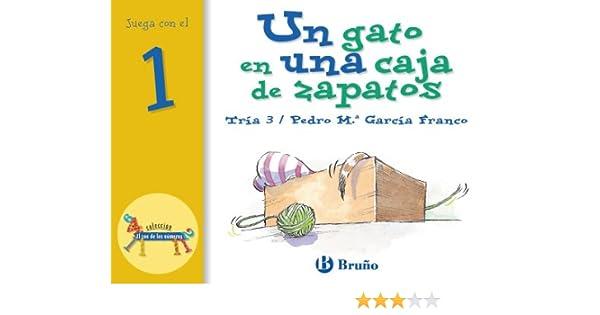 Un Gato en una Caja de Zapatos/The Cat in the Shoe Box (El Zoo de los Numeros/The Zoo of Numbers) (Spanish Edition): Pedro M. Garcia Franco: 9788421636404: ...