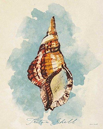 Triton Shell by Lanie Loreth 31