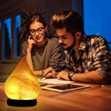 FANHAO Himalayan Salt Lamp with 7 Colors