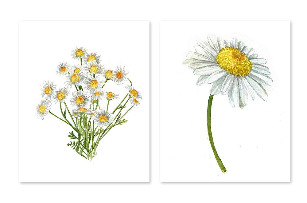 Daisy Wall Art