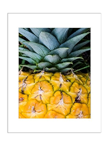 Pineapple Photo Tropical Fruit Kitchen Welcome Decor Food 8x10 Inch Matted Print by Catch A Star Fine Art Photography