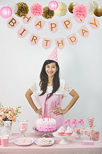 Superior Party Decorations Pack of 15 Pieces Pom Poms, Lanterns, Honeycombs, Happy Birthday Banner