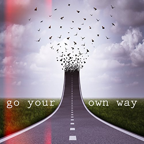 Go Your Own Way - Single by Ti...