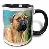 3dRose Dogs Mustiff - Bullmastiff - 11oz Two-Tone Black Mug (mug_4449_4)