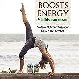 Garden of Life Meal Replacement - Organic Raw Plant Based Protein Powder, Chocolate, Vegan, Gluten-Free, 35.9oz (2lb 4oz/1,017g) Powder