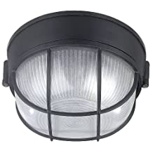 Canarm IOL17BK The Outdoor 1-Bulb Flush Mount Exterior Light with Frosted Glass Globe, Black