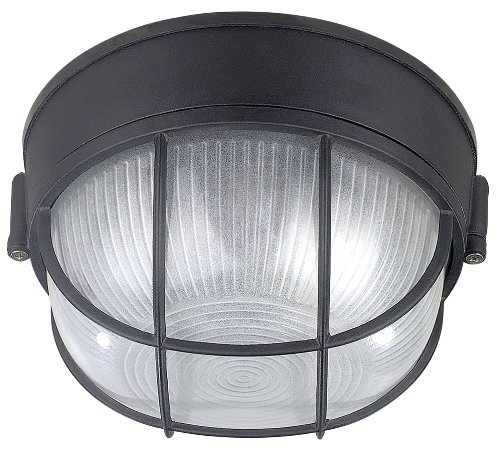Canarm IOL17BK The Outdoor 1-Bulb Flush Mount Exterior Light with Frosted Glass Globe, Black by Canarm