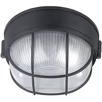Canarm IOL17BK The Outdoor 1-Bulb Flush Mount Exterior Light with Frosted Glass Globe  sc 1 st  Amazon.com & Thomas Lighting SL928378 Newport Outdoor Ceiling Light Brushed ... azcodes.com