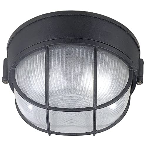 Outdoor ceiling lights amazon canarm iol17bk the outdoor 1 bulb flush mount exterior light with frosted glass globe black aloadofball Choice Image