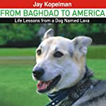 From Baghdad to America: Life Lessons from a Dog Named Lava | Jay Kopelman