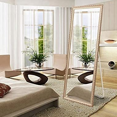 H&A Full Length Floor Mirror with Standing Holder, Dressing Standing Mirror for Bedroom 65''x21.7'' (Champagne)