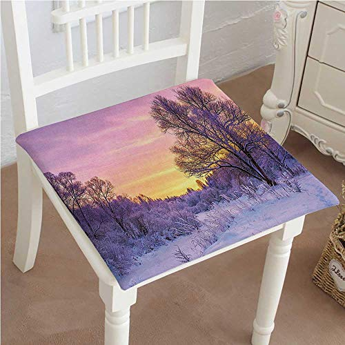 Mikihome Premium Comfort Seat Cushion Decor Winter Landscape with Sunset and Frozen Trees Ice Weather Blizzard Cold Days Cushion for Office Chair Car Seat Cushion 22'x22'x2pcs