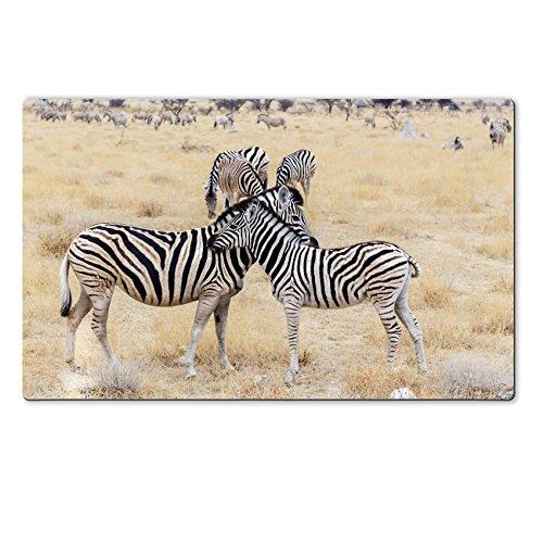 Luxlady Unadorned Rubber Large TableMat IMAGE ID: 34302837 Zebra foal with mother in african bush Etosha national Greensward Ombika Kunene Namibia True wildlife photography