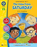 img - for The View From Saturday - Literature Kit book / textbook / text book