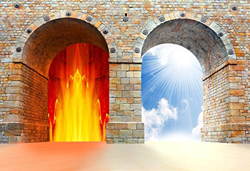 Yeele Backdrops 6x4ft Two Gates to Heaven and Hell Choice Concept Brick Wall Gates Blue Sky White Cloud Sunshine Pictures Adult Artistic Portrait Photoshoot Props Photography Background