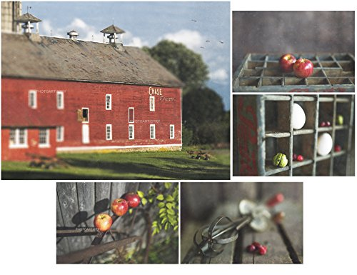 Farmhouse Art Prints, Barn Art, Country Decor, Rustic Wall Art, Red Kitchen, Grey, Primative, Dining, Red Apple Art, Fall Decor by Photo Artistry