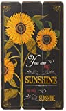 "Midwest CBK 20″ x 12″ ""You Are My Sunshine"" Wood Fence Wall Décor Review"