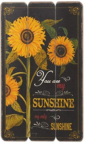 """Midwest CBK 20″ x 12″ """"You Are My Sunshine"""" Wood Fence Wall Décor Review"""