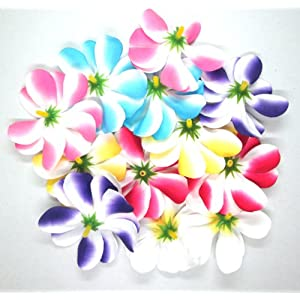"(100) Assorted Hawaiian Plumeria Frangipani Silk Flower Heads - 3"" - Artificial Flowers Head Fabric Floral Supplies Wholesale Lot for Wedding Flowers Accessories Make Bridal Hair Clips Headbands Dress 25"