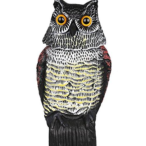 owl rotating head - 6