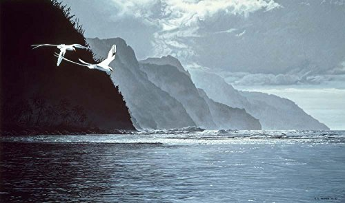 Tailed Tropic Bird - Wallmonkeys White Tailed Tropic Birds Wall Mural by Ron Parker (72 in W x 42 in H) WM248948