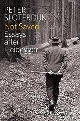 Not Saved: Essays After Heidegger