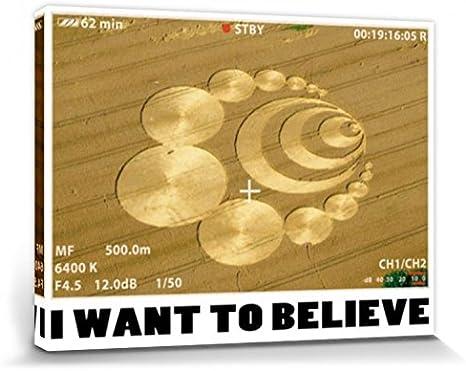 1art1 Círculos En La Cosecha - I Want To Believe, Quiero Creer Cuadro, Lienzo Montado sobre Bastidor (80 x 60cm)