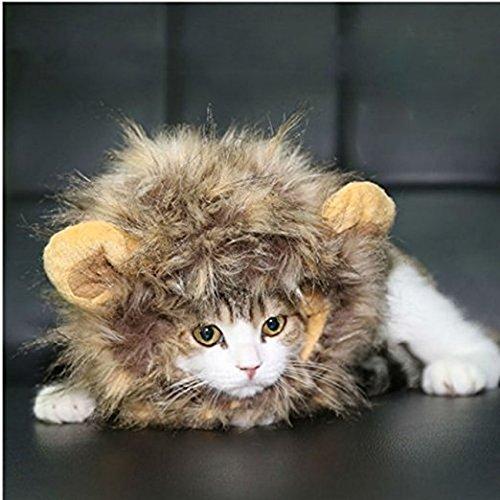 homiki Dog Cat Artificial Lion Mane perruque Chapeau Pet Dress Up avec oreilles Halloween Party Festival