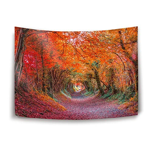 iacafaf Tapestry Large Size Tapestry Wall Hanging Dorm Decor