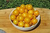yellow cherry tomato seeds - Galina Organic Tomato Seeds- Rare Yellow Cherry Heirloom- 50+ Seeds