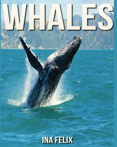 Whales: Children Book of Fun Facts & Amazing Photos on Animals in Nature - A Wonderful Whales Book for Kids aged 3-7