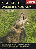 A Guide to Wildlife Sounds: The Sounds of 100 Mammals, Birds, Reptiles, Amphibians, and Insects (The Lang Elliott Audio Library)