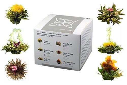 """Feelino 노블 6 혼합 상자 차 꽃 """"흰색"""" 큰 Probier에-그리고 1ce_e 팩 6 다른 백색 차 차 장미와, 개별적으로 진공 포장 상자 선물"""