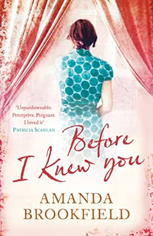 book cover of Before I Knew You