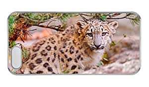 Customized iphone 5 cases make Cute snow leopard face close up predator animals PC Transparent for Apple iPhone 5/5S
