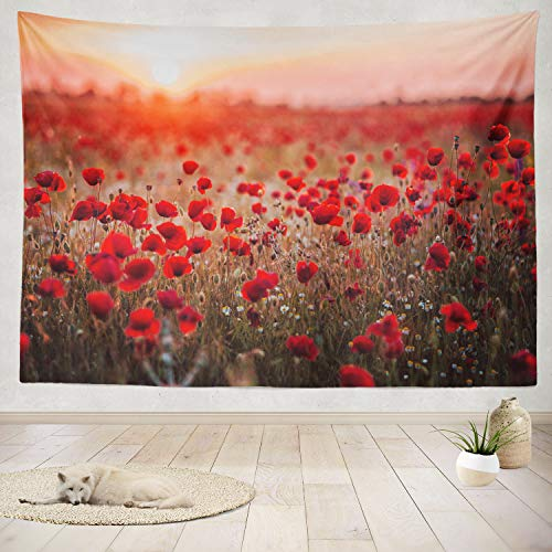 ASOCO Tapestry Wall Handing Beautiful Field Red Poppies Sunset Light Russia Poppy Field Red Russia Wall Tapestry for Bedroom Living Room Tablecloth Dorm 60X80 Inches
