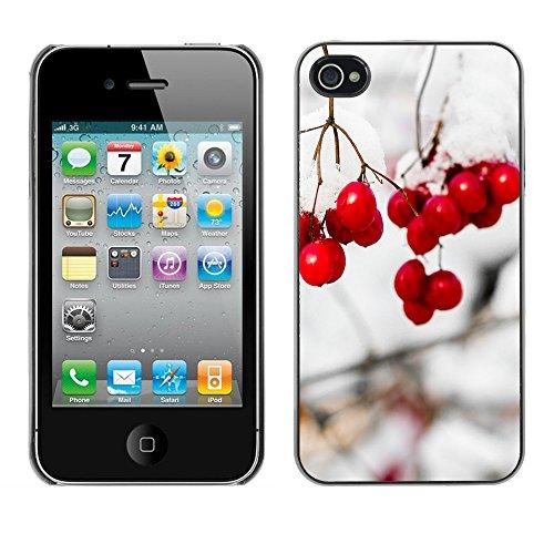 Premio Sottile Slim Cassa Custodia Case Cover Shell // F00016767 tree Snowball // Apple iPhone 4 4S 4G