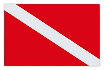 Image result for dive flag