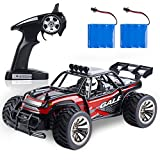 ANTAPRCIS RC Remote Control Car, 15 km/h RC Monster Buggy Crawler Vehicle