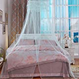 Coerni Premium Elegant Princess Mosquito Net for Bed (Green)