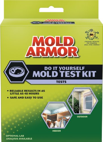 (Mold Armor FG500 Do It Yourself Mold Test)
